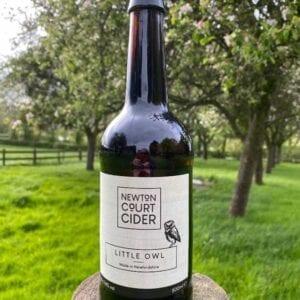 Newton Court Cider Little Owl Cider 500ml