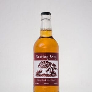 Lyne Down Organics Roaring Meg Slightly Sparkling Medium Cider 500ml 5 2 Abv